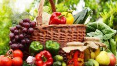 Organik Tarım 2020 Desteklemesi
