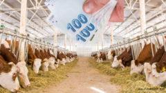 7 Adımda Hayvan Kredisi Nasıl Alınır? (SIFIR FAİZLİ)